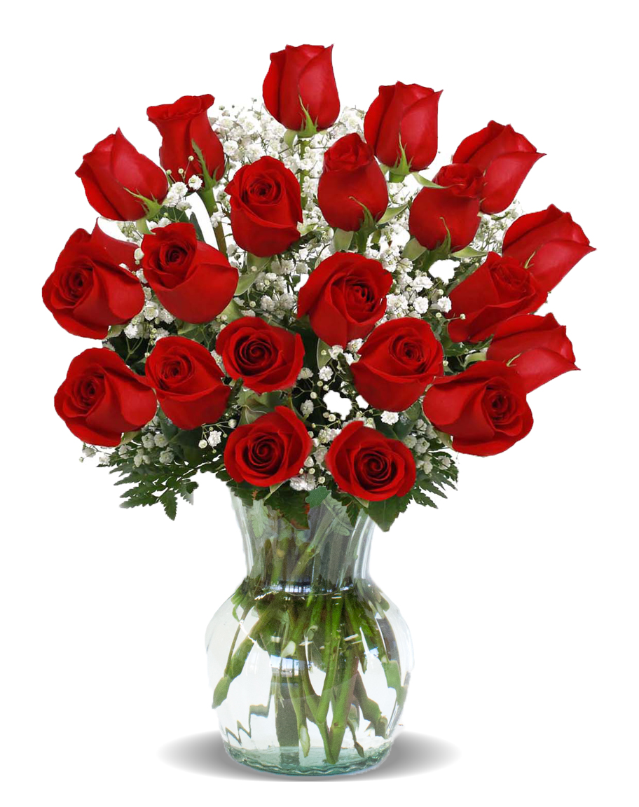 Home two dozen roses arranged in a vase flowerama for 12 dozen roses at your door