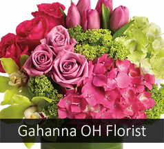 Gahanna Ohio Flower Shop
