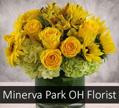 Minerva Park Ohio Flower Shop