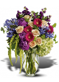 violet, red, purple, tan flowers