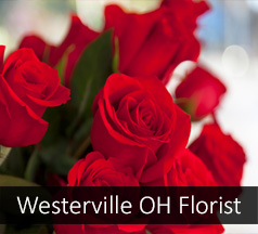 Westerville Ohio Flower Shop