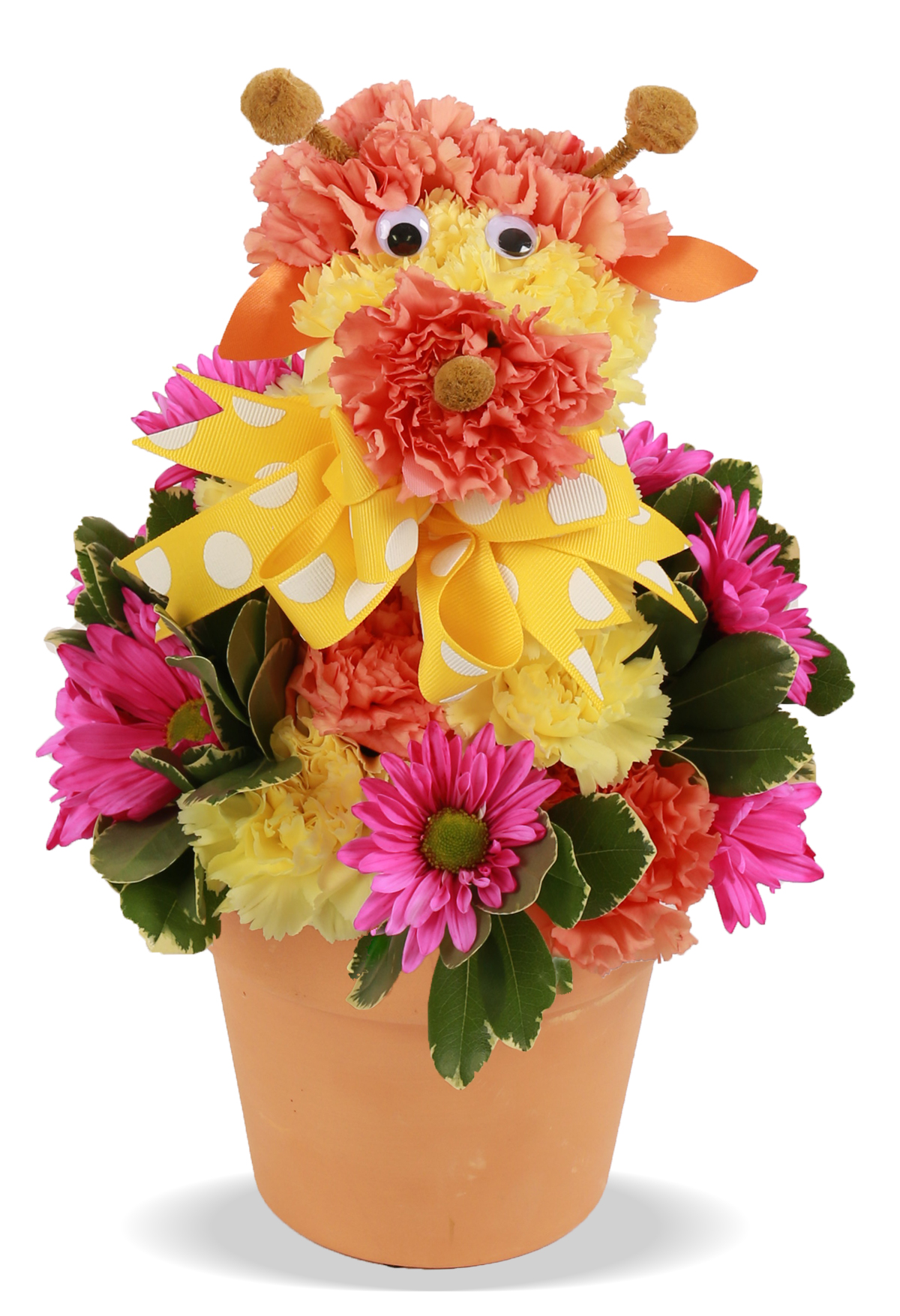 Birthday Flowers For Kids Joey Giraffe Columbus OH Florist Flowerama Co