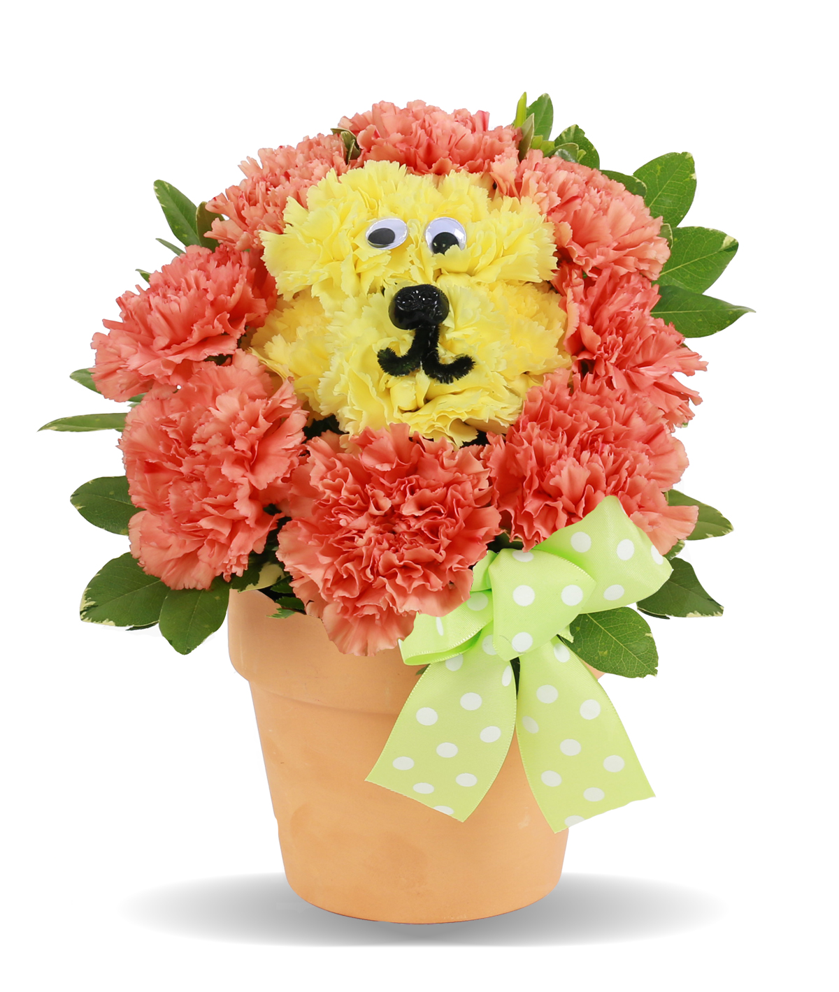 Birthday Flowers For Kids Leo Lion Columbus OH Florist Flowerama Columb